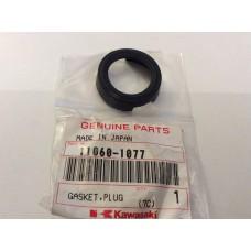 Kawasaki zx9R,ZX900 Gasket Plug Head 11060-1077