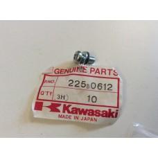Kawasaki AR50, AR80,KD80, KH100 Pan screw 225B0612