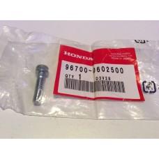 Honda cbf500 vtr1000f Bolt, Socket 6x25 96700-0602500